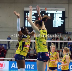Allianz MTV Stuttgart - Imoco Volley Conegliano